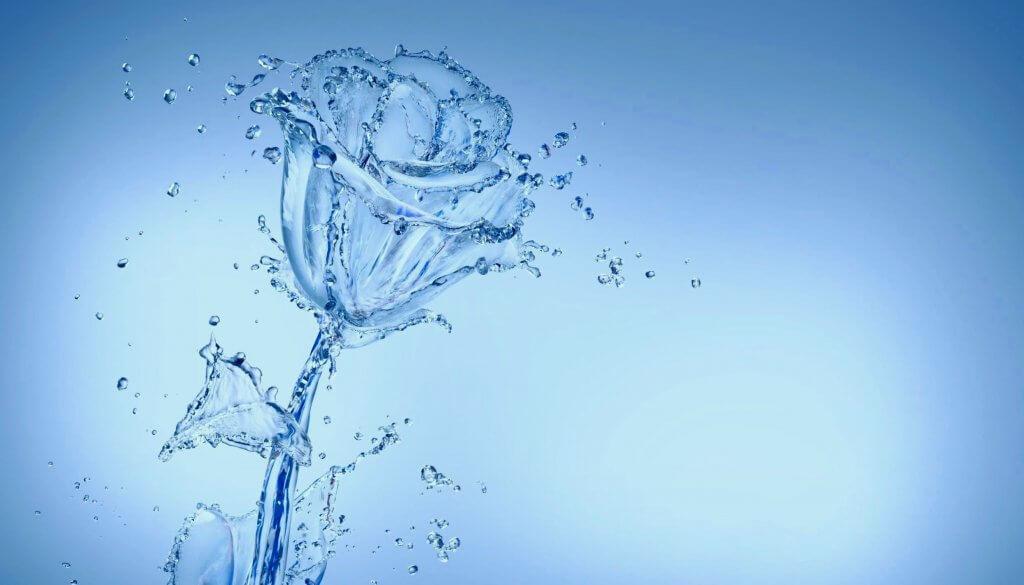 Odor Neutralizing PT Restroom Spray Washdown