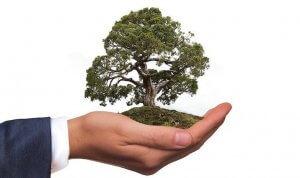 Environmentally Friendly PT Odor Control